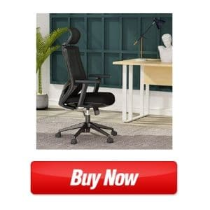 Most Comfortable Ergonomic Office Mesh Chair with Lumbar Support